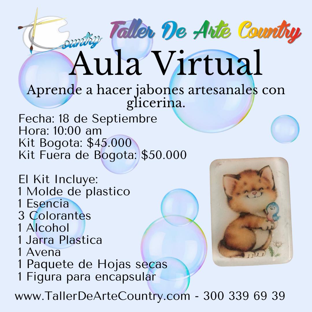 Aula Virtual (1)